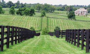 Jonabel Farm