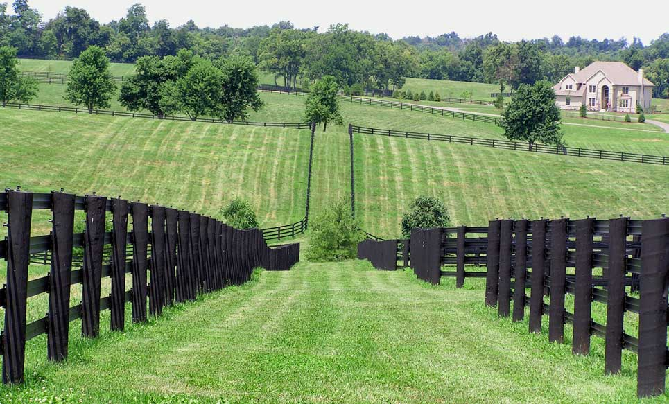 While providing a strong design statement and a striking framing piece for fences and gates our stoneway pillars are