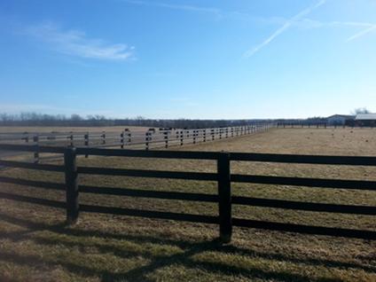 4-Board Fence